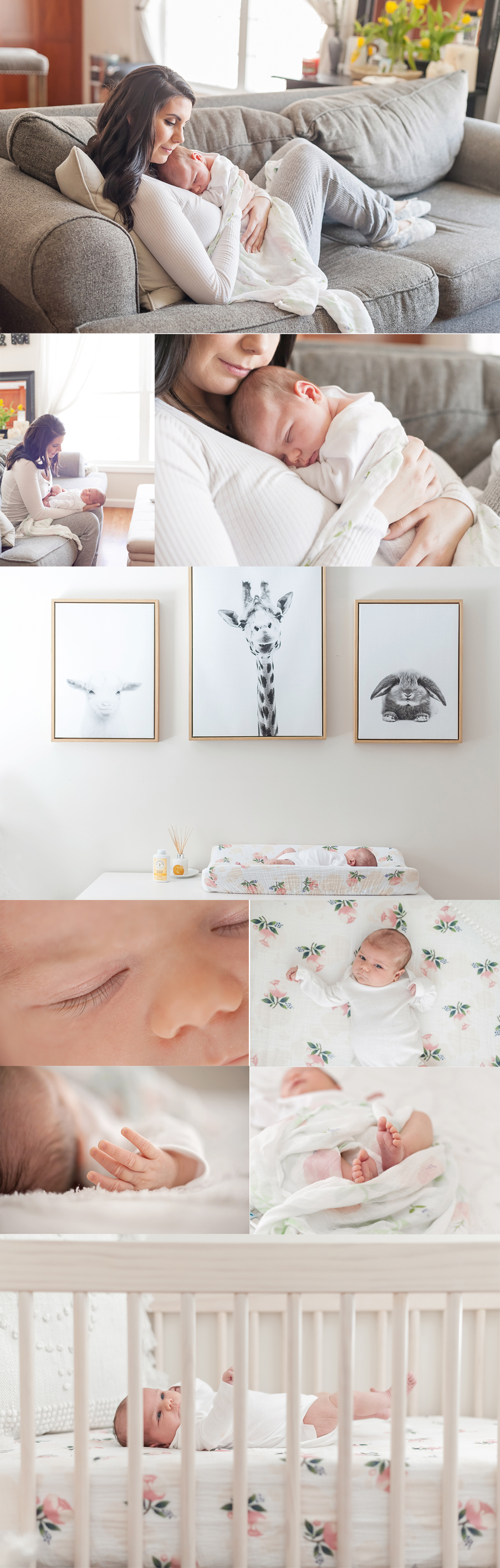 massachusetts at home lifestyle newborn photography